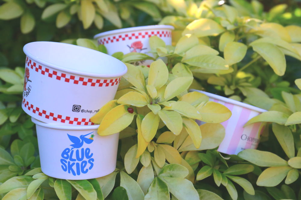 Biodegradable Paper Cups, Product's Safety, and Climatic Change: Is It Safe to Import from China?